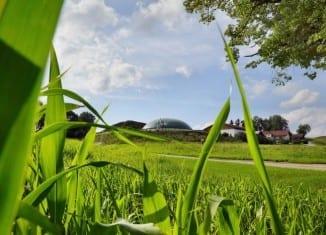 zrównoważone rolnictwo
