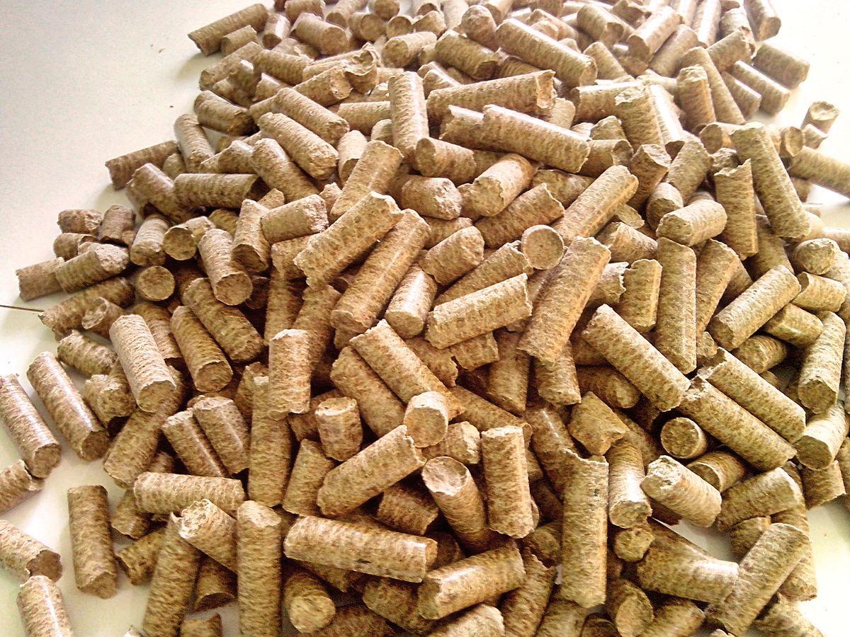 Magazyn biomasa promuje polsk bran na pelletu targach for Italia legno energia