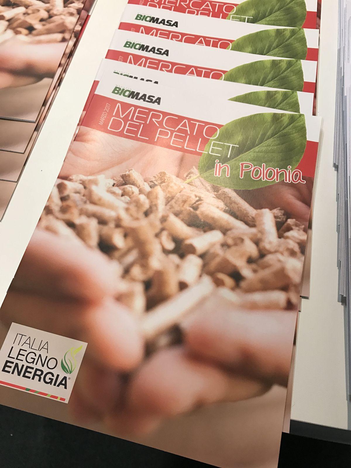 Polski sektor pelletu na italia legno energia magazyn for Italia legno energia