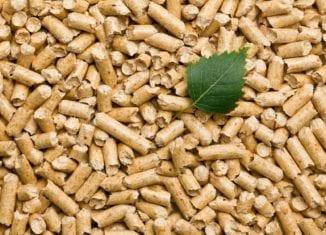 fot: Shutterstock.com