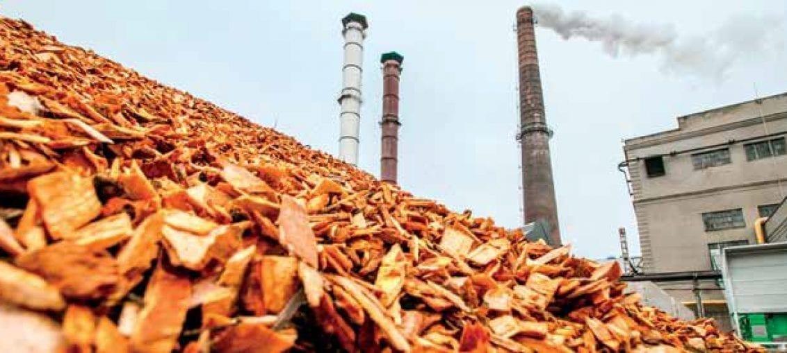 Certyfikacja biomasy