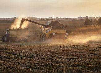 Rynek biopaliw