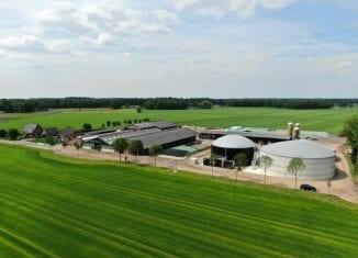 Zielony gaz dla holenderskich producentów mleka
