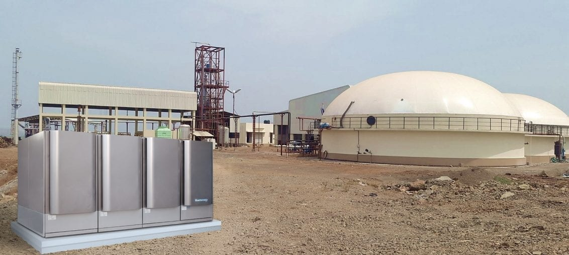 biomasa na świecie