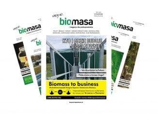 Magazyn Biomasa styczeń 2020