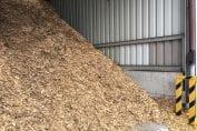 biomasa drzewna