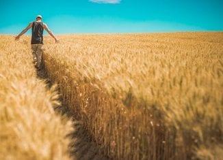 środki unijne dla rolników