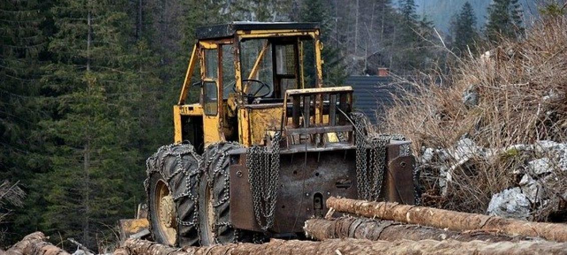 Zmiany dyrektorów Lasów Państwowych