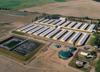 biogazownia goodvalley
