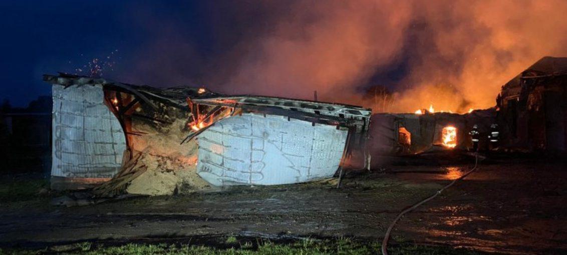 Pożar w fabryce pelletu