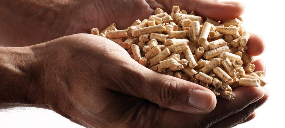 zakaz stosowania pelletu