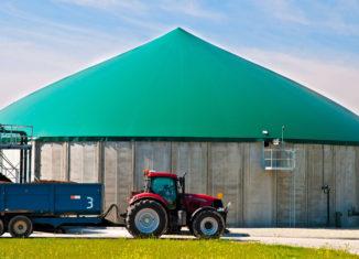 Co trafia do polskich biogazowni