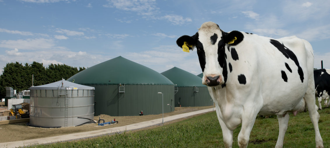 Produkcja biometanu rośnie