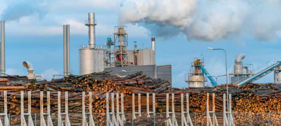 biomasa coraz mniej popularna