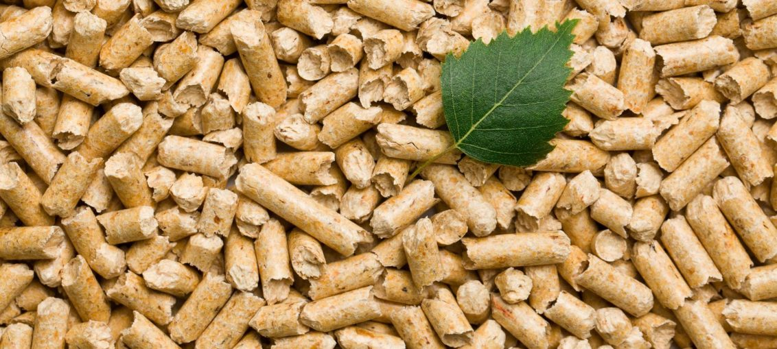 pellet jest ekologiczny