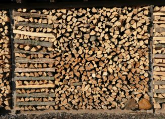 wykorzystanie biomasy