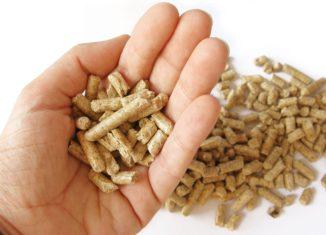 Jak wybrać dobry pellet