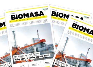 magazyn biomasa - marzec 2021