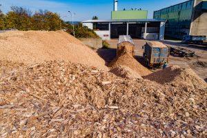 Łęąńska biomasa