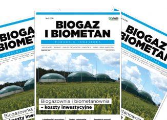 Biogaz i biometan - poradnik inwestora