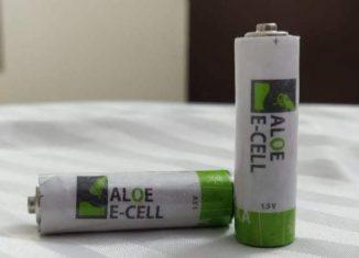 bateria z aloesu
