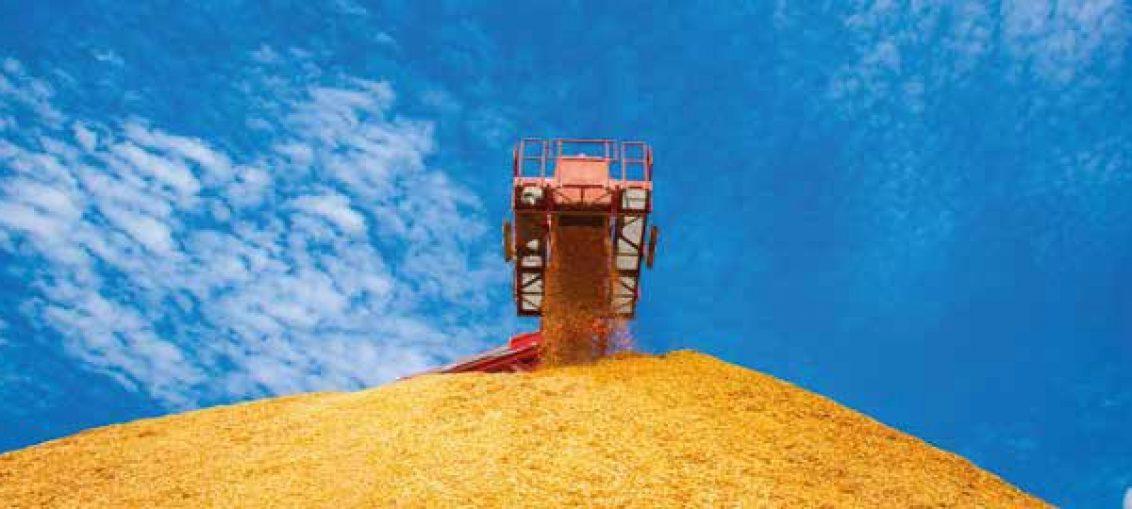 rola biomasy w ciepłownictwie