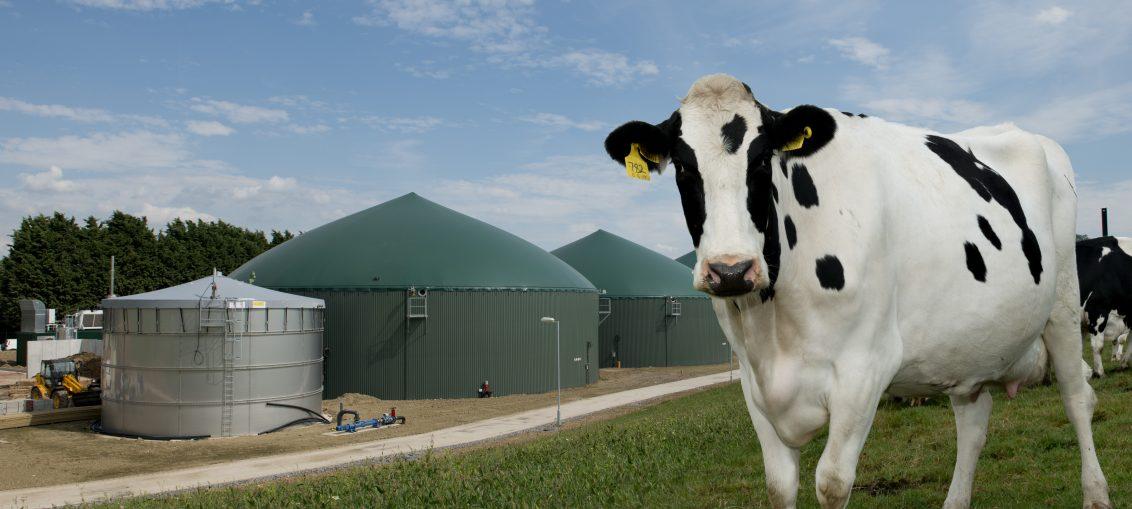 nowa biogazownia rolnicza